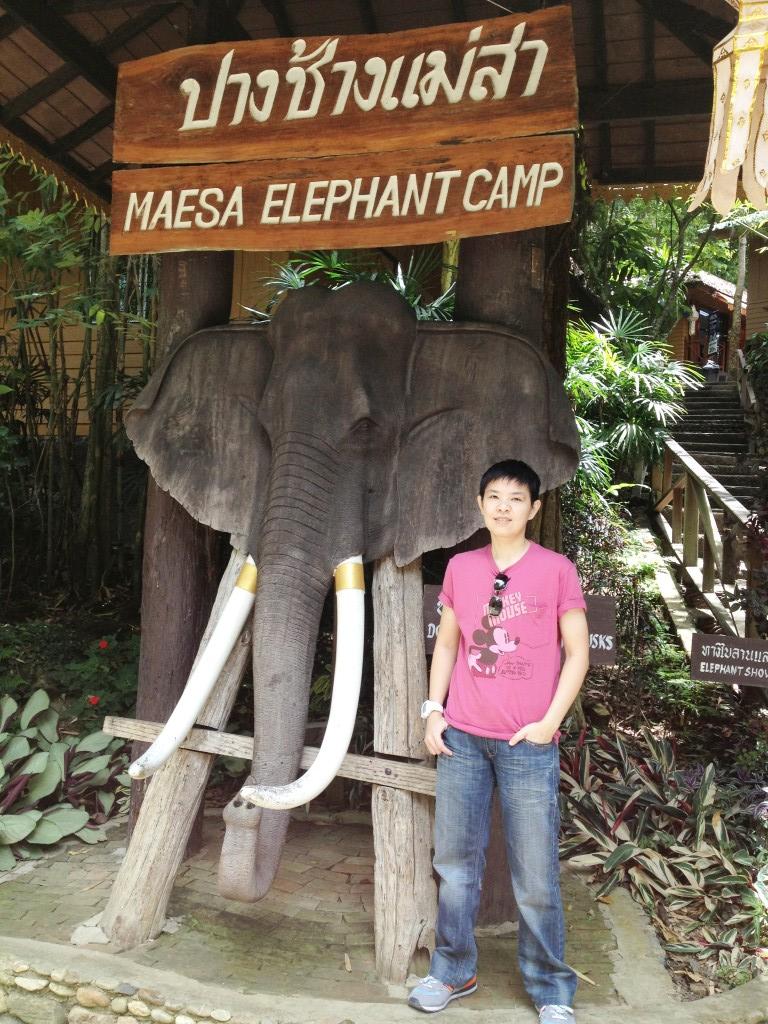 ปางช้างแม่สา1