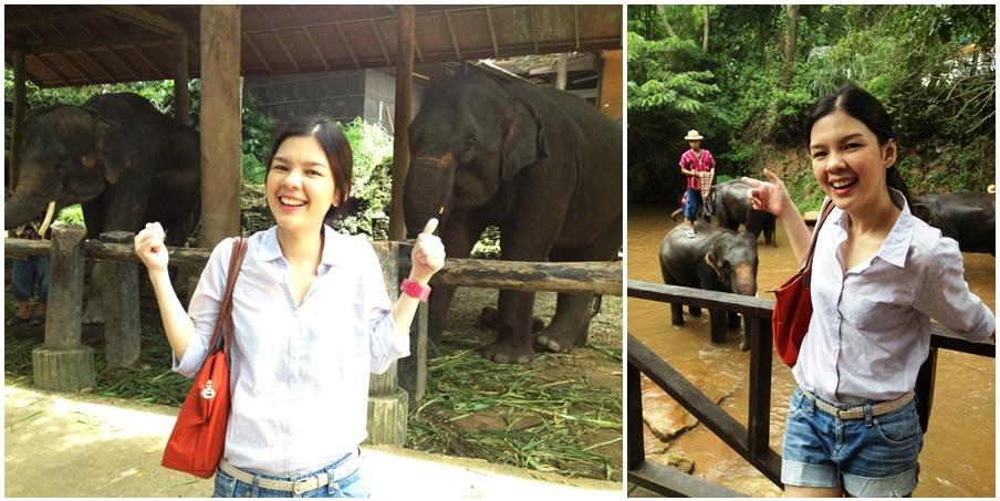 Rung@ปางช้างแม่สา